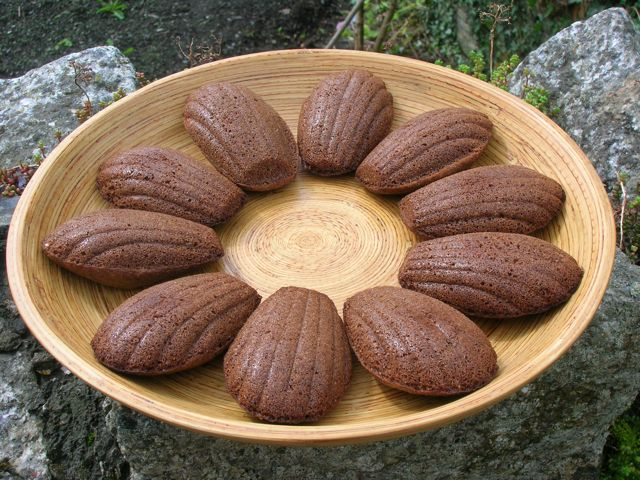 Spicy Chocolate Madeleines
