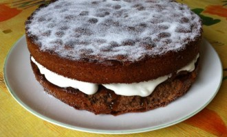 Hot Chocolate Victoria Sandwich with Vanilla Apricot Jam and Cream.