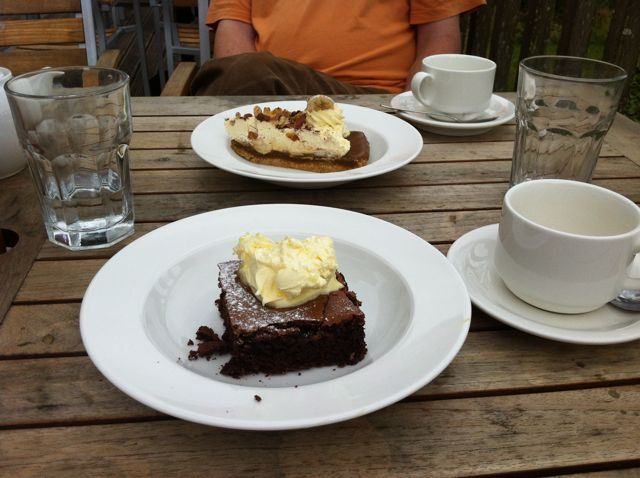 Brownie at Lily Tearooms, Penrose Water Gardens