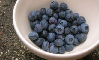 Bowl of blueberries picked from the garden.