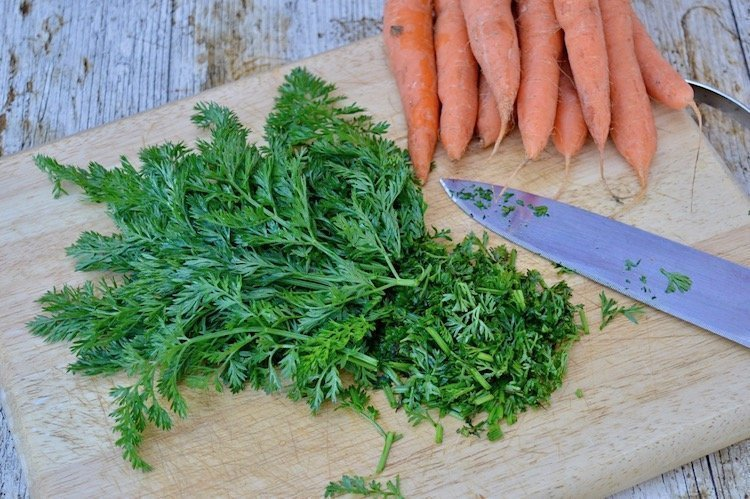 Carrot greens on a chopping board being chopped with a bunch of carrots in the background.