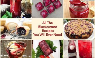 All the blackcurrant recipes you will ever need.