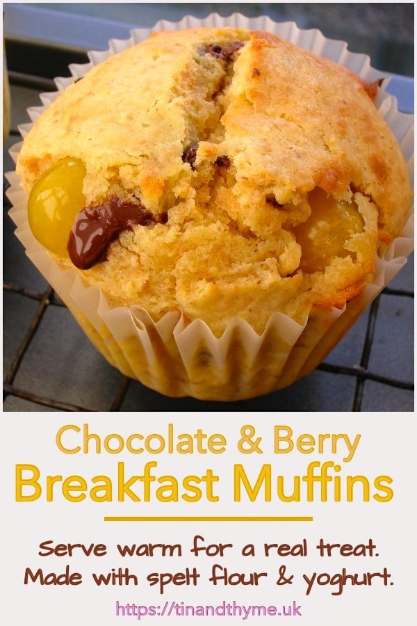 Breakfast Muffins with dark chocolate and berries.
