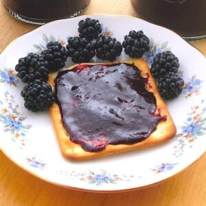 Chocolate Blackberry Jam on a cracker with blackberries.